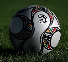 Fifa South Africa Soccer Ball by Laura Sanders