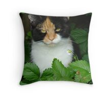 Charlie in the strawberry patch Throw Pillow