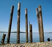 Upright - Sunnyside Beach (Steilacoom, WA) by Britland Tracy