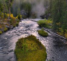 Lewis River Dawn - Yellowstone by Stephen Vecchiotti
