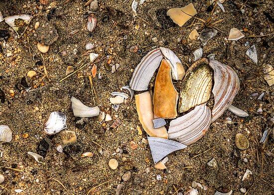 Unbreak My Heart by Evelina Kremsdorf