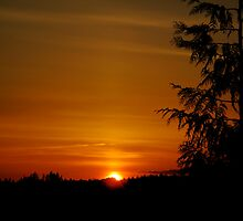 Sunset in Steilacoom, WA by Britland Tracy