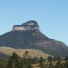Mt Lindesay by Jenelle  Irvine