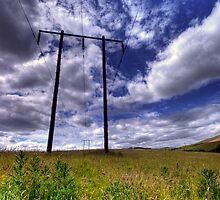 Summer Energy Crisis. by dmuir