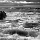 Silver Surf by Blackgull