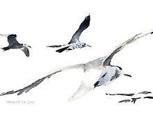 Seagulls in Randfontein?! by Maree  Clarkson