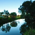 GinGin brook  by daniellestacey