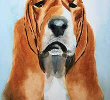 That basset look by Sharon Williamson