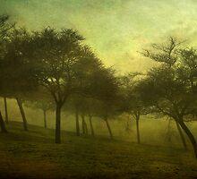 wintersway ...  by richard-b