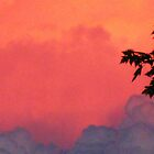Clouds: A Lake Erie Sunset ~ Not A Volcano...  by artwhiz47