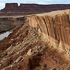 Green River and the White Rim, Canyonlands by Rick Ferens