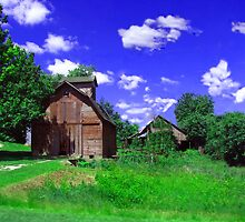 Little Barn by Linda Miller Gesualdo