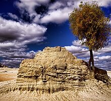 Perry Sand Hills by Gerard Rotse