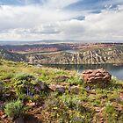 Flaming Gorge Springtime by Kim Barton