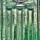 green  door by TIMKIELY