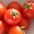 Fruits: Tomato - In a Bowl by adpixels