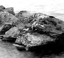 Rocks 2 by Ellis Lawrence