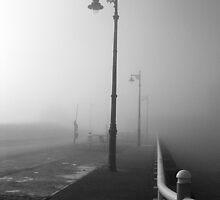 Misty Morning by Ellis Lawrence