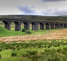 Dandry Mire Viaduct by Tom Gomez