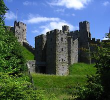 The Barbican of Arundel Castle, Arundel, England 2010 by J.D. Grubb