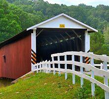 Jackson Saw Mill Bridge (Another View) by Monte Morton