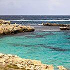 Blue Lagoon by squidypoo