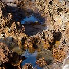 Reflections from a Rock Pool by AlexKokas