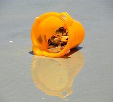 The Orange Pail  by Caren