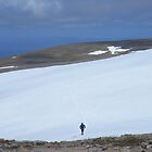 The Cairngorms: Across the Snow Fields of Ben Machdui by Rob Parsons