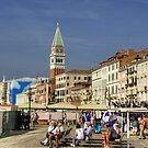 On the Riva Degli Schiavoni by Tom Gomez