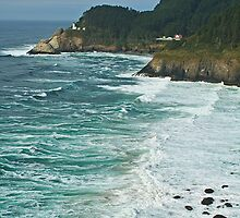 Heceta Head Lighthouse by Anne McKinnell