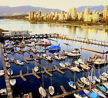 View from Burard Bridge in Vancouver,bc by marija pavlovic