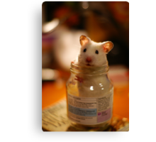 Hamster in a jar Canvas Print