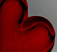 have a heart! by Deb Gibbons