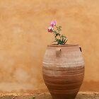 Mediterranean Urn by emele