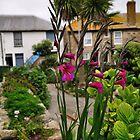 Flowers In a Border by Paul  Eden