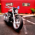 Red harley by pdsfotoart