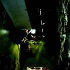 Green Asylum by Natalie Broome