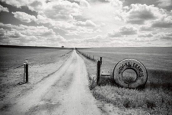 Mallee Farm Track, South Australia by Ty  Mickan