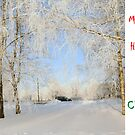 Christmas Holiday Card 8333 - Winter Wonderland  Riga Latvia by FirstTree