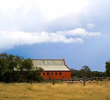 Woolshed awaiting storm. by Julie Sleeman