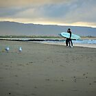 surfers and gulls by natalie angus