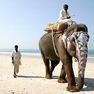 Sonu on the beach by Lauren Tober
