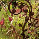 Wrought Iron Beauty by sarnia2