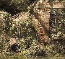 Secret Garden 3 by Danuta Antas