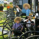 The Amish Buggy by Monte Morton