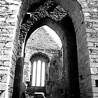 Arches of Timoleague by Nicole Shea