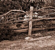 Ye Old Fence by Jason Ruth