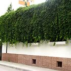 Ecological blinds by Maria1606