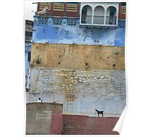 Goat by the Ganges Poster